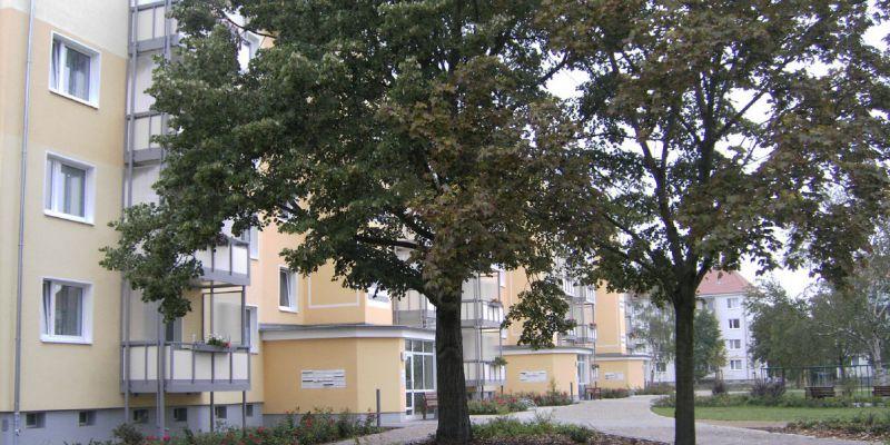 im-stadtpark-1833DEA6A5-081F-7471-EF62-1F2517C4FBAD.jpg